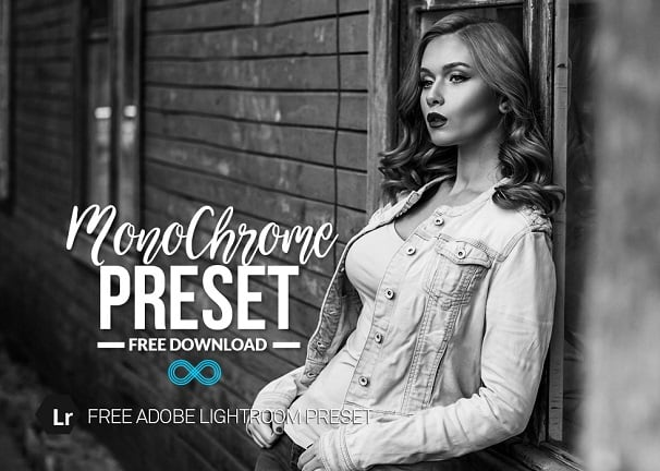 free lightroom preset, monochrome