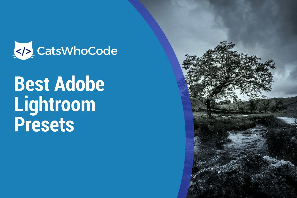 Best Adobe Lightroom Presets