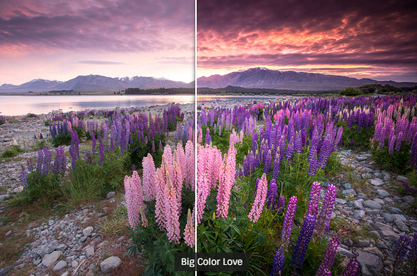 The 83 Best Lightroom Presets (Free & Paid) 1